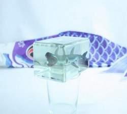 Встречайте «Looking Glass»: Двумерную технологию, которая превосходит трёхмерную печать
