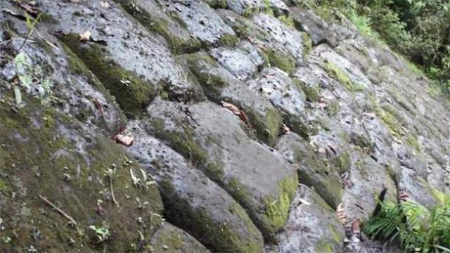По всей видимости, исследователи обнаружили в джунглях Эквадора «Затерянный город гигантов»