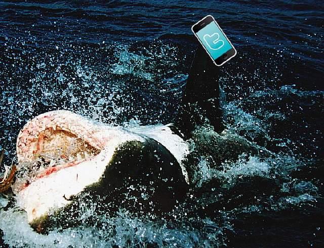 sharkfone