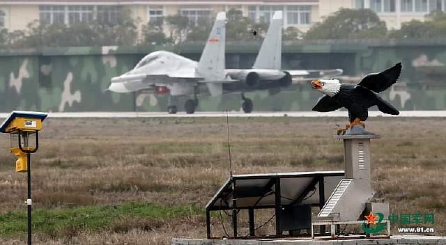 Su-30MK2 + Eagle