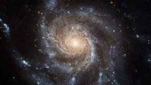 Южноафриканские учёные утверждают: Золотое сечение является глобальной константой для нашей вселенной