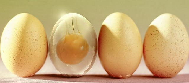 Пленка в скорлупе яиц