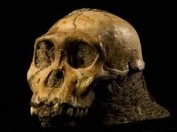Древнейшие каменные орудия на планете превосходят возрастом самого человека