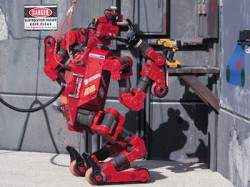 chimp_robot_faulhaber