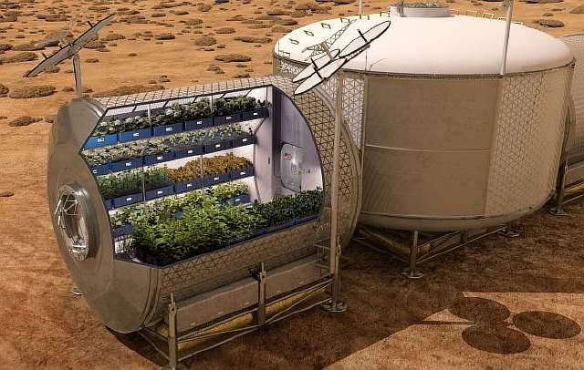 Картинки по запросу выращивание растений в космосе