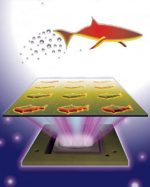 microfish-bloodstream2