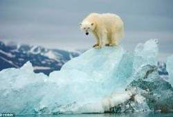 Global-Warming-icon