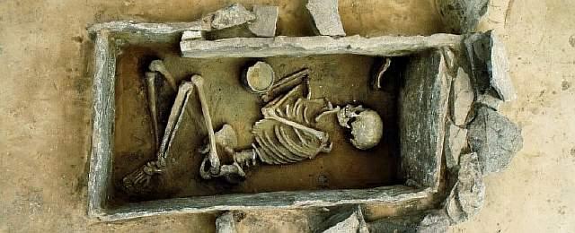 Skeleton_web_1024