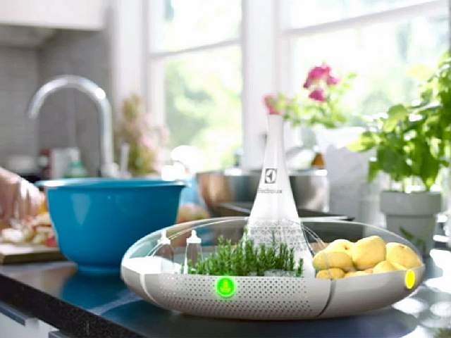 4-electrolux-bloom-kettle-1