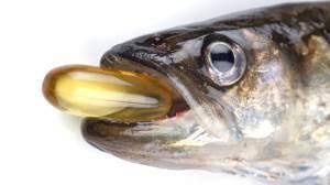 Рыбий жир способствует расщеплению жировых клеток и снижению веса