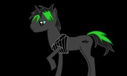 pony-300x150