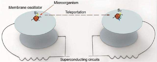 1-physicistspr