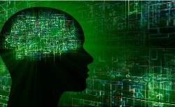 brain-619-316