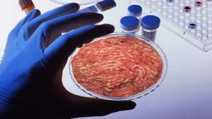 В течение считанных лет выращенное в лаборатории мясо появится на прилавках