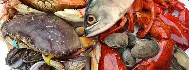 nanxingyangsheng-seafood