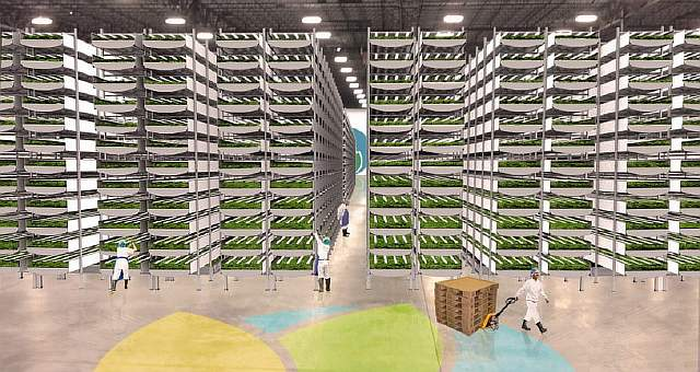 aerfarms-rows-960x511
