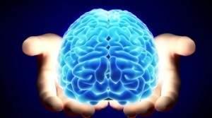 Пациент, у которого отсутствует большая часть мозга, опровергает основные теории сознания