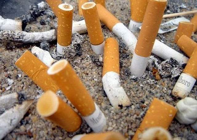 Metals-from-Cigarette-Butts-May-Pose-Potential-Threat-to-Marine-Life