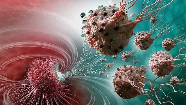 Подпись к изображению: Легионы наноробототехнических агентов состоят более чем из 100 миллионов жгутиковых бактерий – следовательно, самодвижущихся – и загружены препаратами, которые по кратчайшему пути перемещаются от места введения препарата к участку тела, нуждающемуся в лечении (по данным лаборатории Polytechnique Montréal).