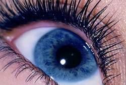 Eye-cc-Look-Into-My-Eyes