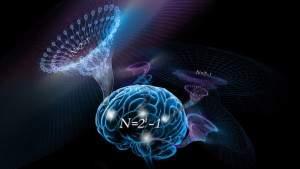 Интеллект мог развиться из базового алгоритма в человеческом мозге