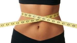 Бельгийские ученые нашли бактерию, защищающую от ожирения и диабета