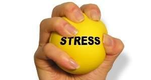 stress_web