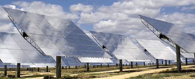 solar-01-plant_1024