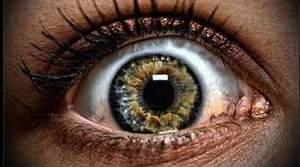 Исследование: глаза это действительно зеркало души