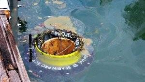 В Великобритании установлен первый морской мусоросборник для очистки моря от пластика