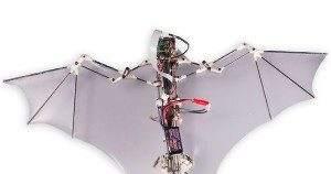 Пентагону требуются дроны в виде летучих мышей, питаемые лазерным лучом
