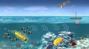 Американские военные хотят, чтобы генетически модифицированные морские существа следили за вражескими кораблями