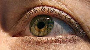 Патч из стволовых клеток позволяет слепым снова читать