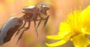 Автономного робота-пчелу запатентовала… торговая сеть