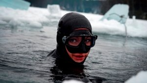 Синтетический «жир» может утроить время пребывания дайверов в ледяной воде