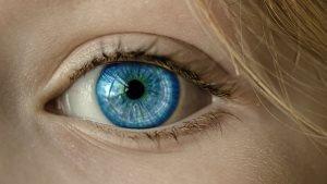 Ученым удалось визуализировать связи между глазом и мозгом