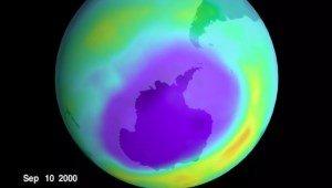 Озоновая дыра будет расти — и вот почему