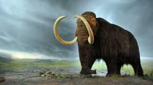 Российский центр клонирования намерен вернуть к жизни мамонтов