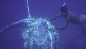 Мировой океан на грани гибели