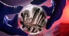 Этот широко распространённый грибок может нанести вред иммунной системе человека