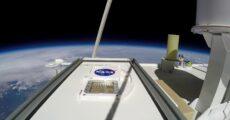 НАСА: черная плесень с Земли способна выживать на Марсе